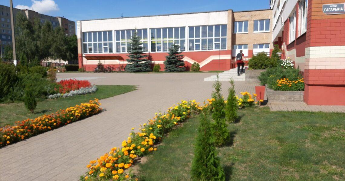Особенности гимназии областного города